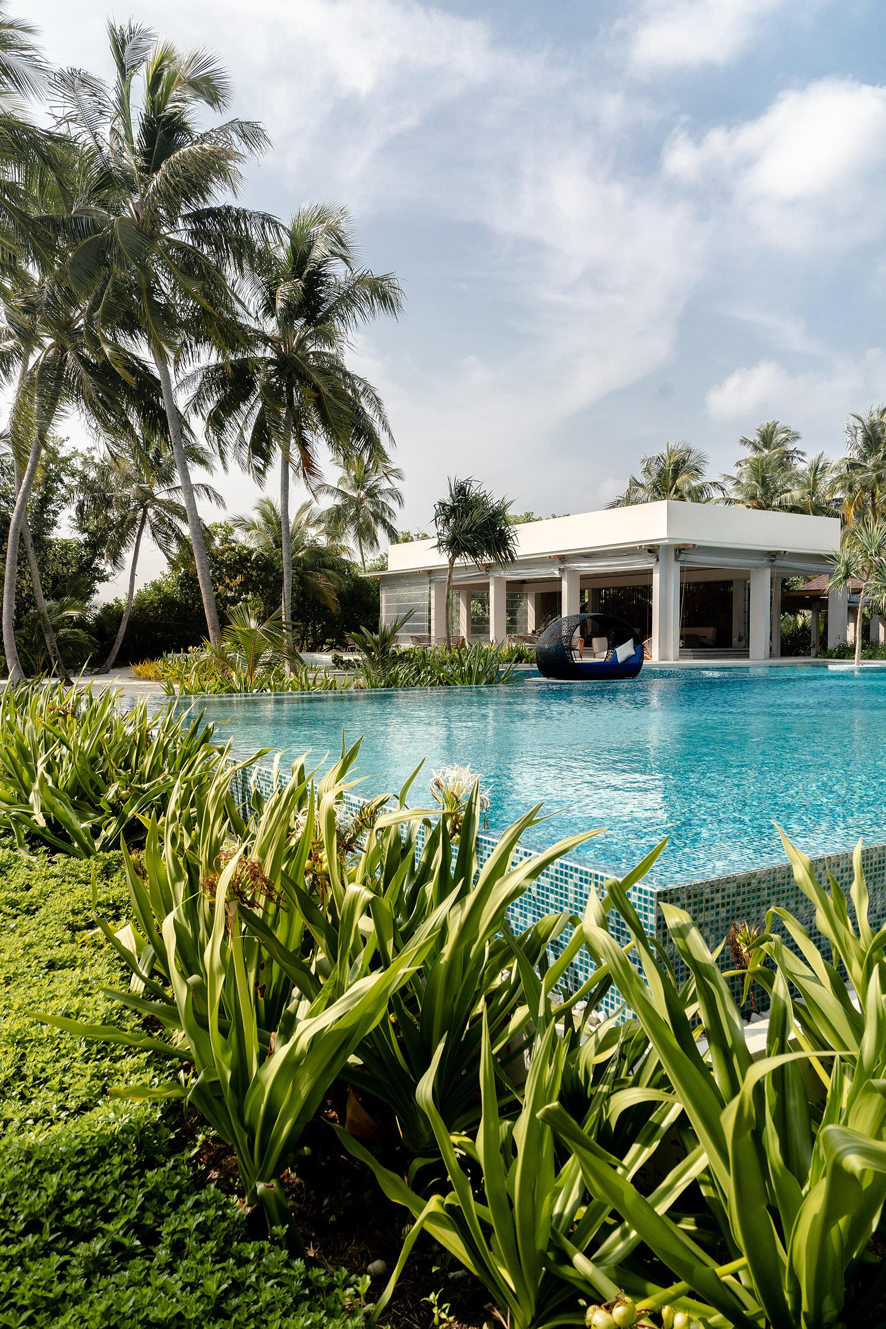dhigali malediven hotel public pool travel blog sunnyinga