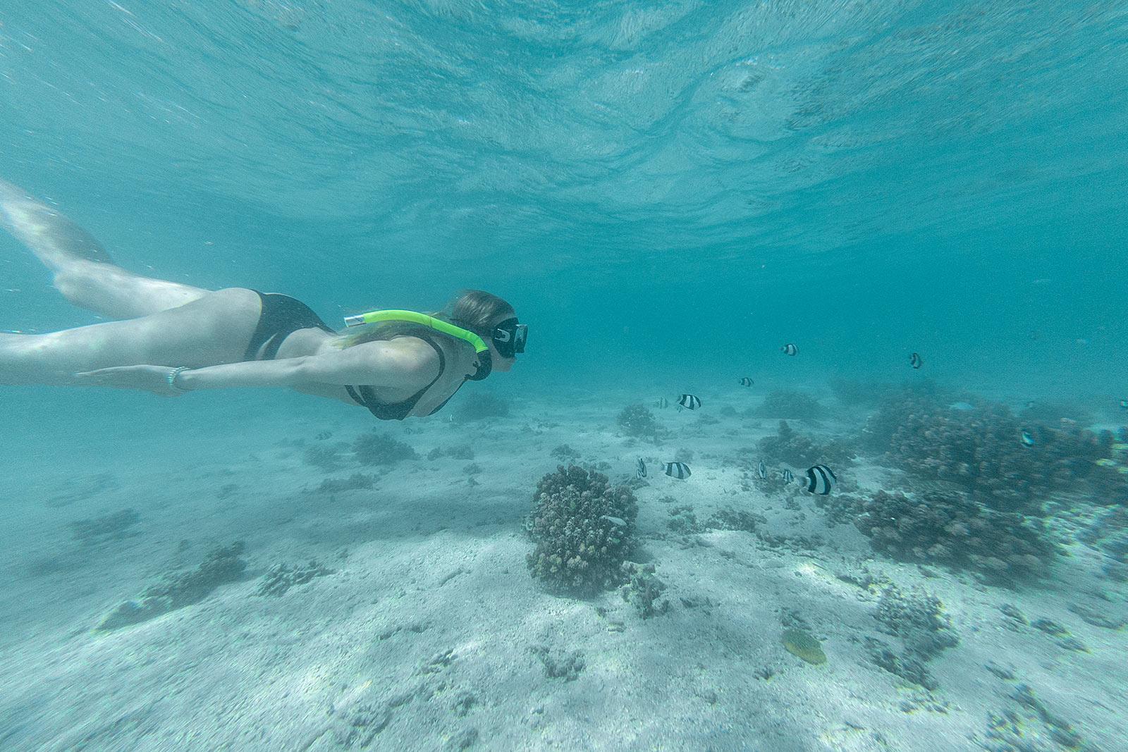mauritius schnorcheln fische travel blogger sunnyinga
